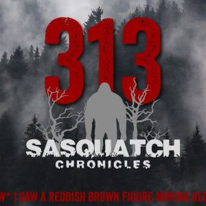 SC EP:313 I saw a reddish brown figure moving along the tree line [Members] PREVIEW