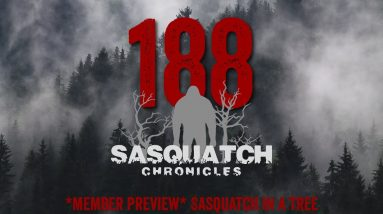 SC EP:188 Sasquatch in a tree [Members] PREVIEW