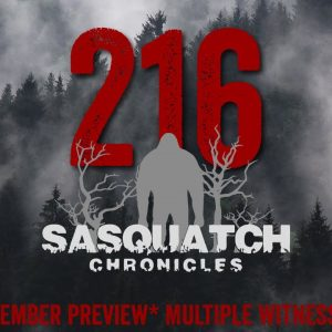 SC EP:216 Multiple witnesses [Members] PREVIEW