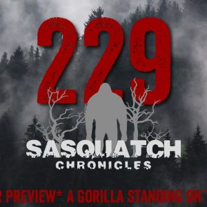 SC EP:229 A gorilla standing on two legs [Members] PREVIEW