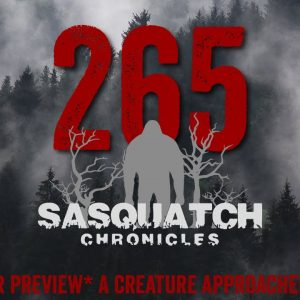 SC EP:265 A creature approached my car [Members] PREVIEW