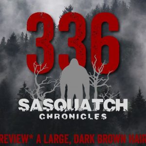 SC EP:336 A large, dark brown hairy creature [Members] PREVIEW