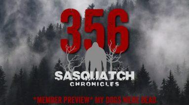 SC EP:356 My dogs were dead [Members] PREVIEW