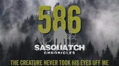 SC EP:586 The Creature Never Took His Eyes Off Me