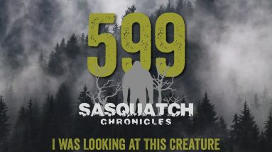 SC EP:599 I Was Looking At This Creature