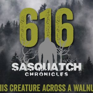 SC EP:616 I Chased This Creature Across A Walnut Orchard