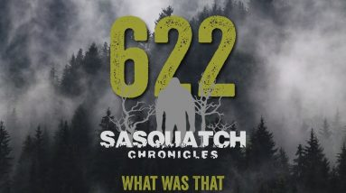 SC EP:622 What Was That