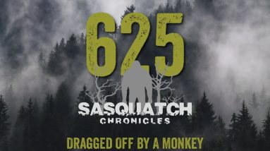 SC EP:625 Dragged Off By A Monkey