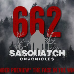 SC EP:662 The Face In The Window [Members] PREVIEW