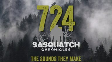 SC EP:724 The Sounds They Make