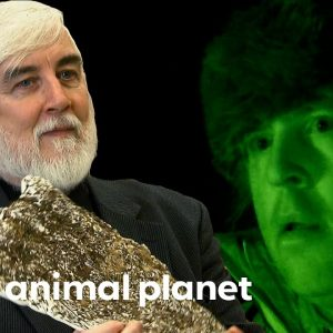 Cryptozoology Expert Helps The Team | Finding Bigfoot
