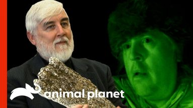Cryptozoology Expert Helps The Team   Finding Bigfoot