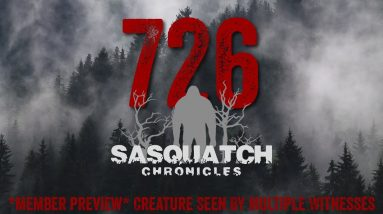 SC EP:726 Creature Seen By Multiple Witnesses [Members] PREVIEW