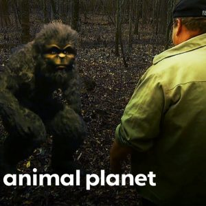 The Closest Bigfoot Encounters | Finding Bigfoot