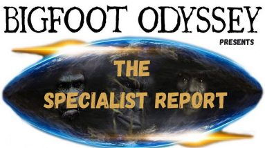 THE SPECIALIST REPORT - BARB CHARLTON