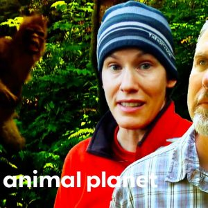 """""""They Are Here. That Was A Sasquatch!"""" 