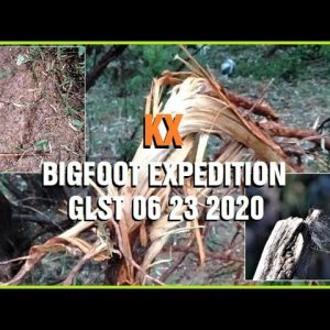 BIGFOOT EXPEDITION GLST 06 23 2020 Tracking, Prints, Hair & Damage