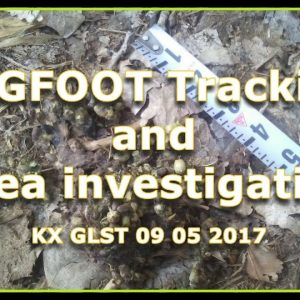 BIGFOOT Tracking and area investigation GLST 09 05 2017