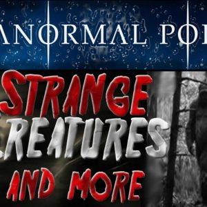Strange Creatures and MORE