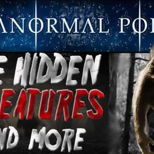 The HIDDEN CREATURES and More