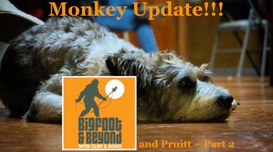 Bigfoot and Beyond with Cliff and Bobo - Ep. 041: Monkey Origin Story and Apes on the Radio Part 2