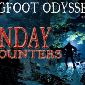 SUNDAY ENCOUNTERS - 'Bigfoot scared me out of the woods'